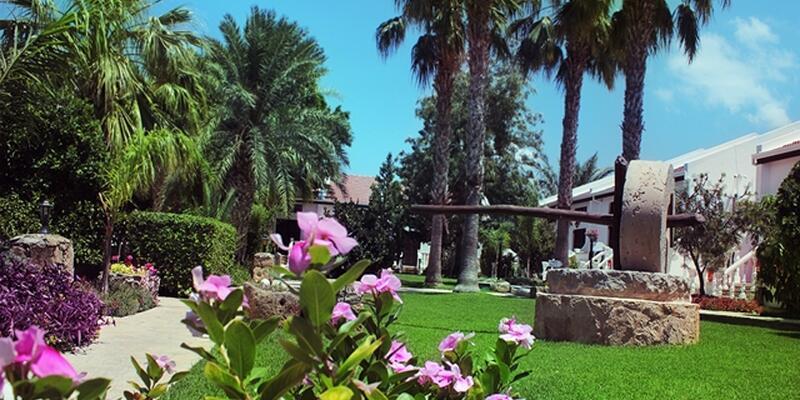 Views from Villas.jpg